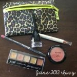 Subscription Box Share: June 2013 Ipsy Bag