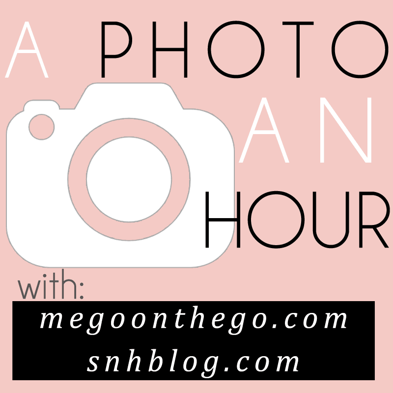 A Photo an Hour Link-Up